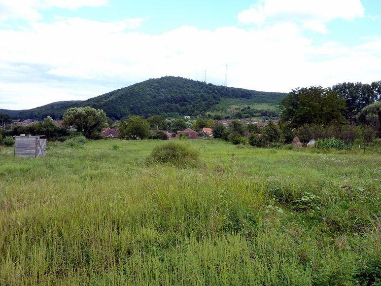 Grundstück in der Nähe des Zentrums
