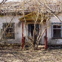 Region-von-tschernobyl-04