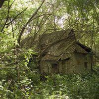 Region-von-tschernobyl-08