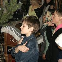 Voronezh-ikone11