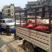 Nepal-150507-007